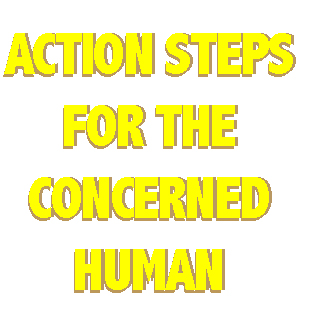 Action Steps For The Concerned Human