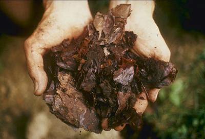 Compost, Imitating Nature