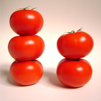 When We Went To Buy Tomatoes